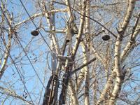 http://images.vfl.ru/ii/1502779452/b6e1d794/18252580_s.jpg