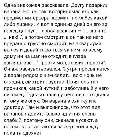 http://images.vfl.ru/ii/1502798611/6b07936b/18255707_m.jpg