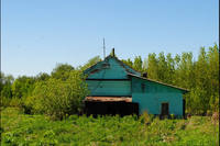 http://images.vfl.ru/ii/1503333857/a88b4226/18324153_s.jpg