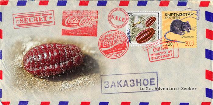 http://images.vfl.ru/ii/1503518767/97de2c44/18349858.jpg