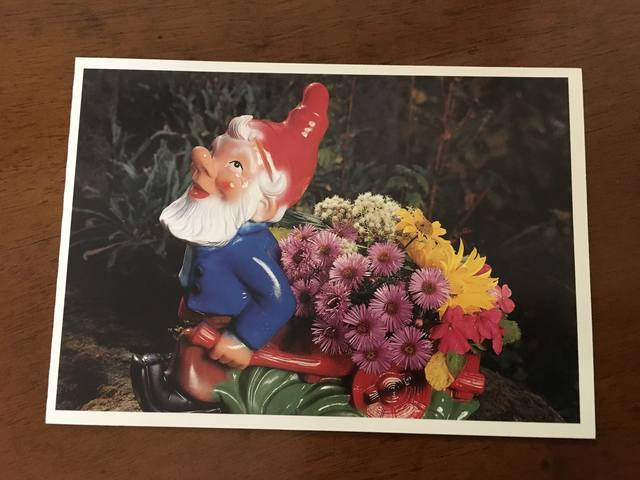 http://images.vfl.ru/ii/1503939749/63d17447/18400821_m.jpg