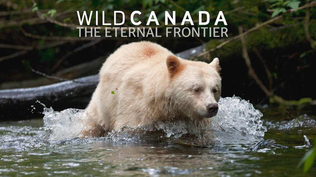 eternal frontier thumb-from-cbc