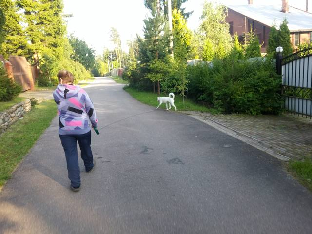 http://images.vfl.ru/ii/1504107853/42090bd5/18423430_m.jpg