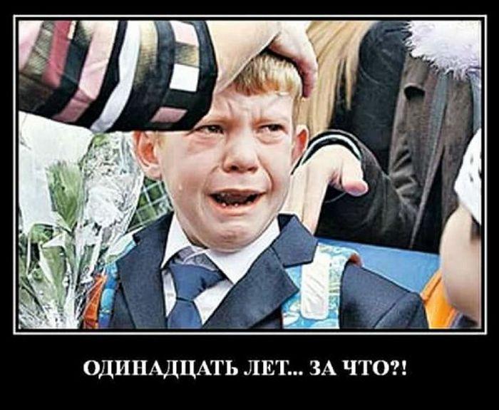http://images.vfl.ru/ii/1504198342/bae45c00/18436342.jpg