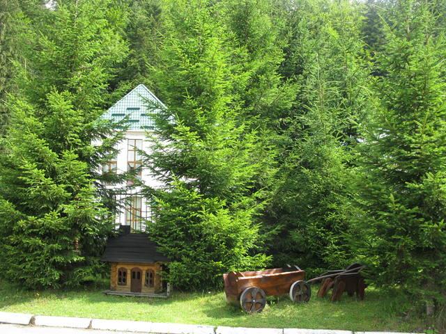 http://images.vfl.ru/ii/1504370371/80663f96/18458976_m.jpg