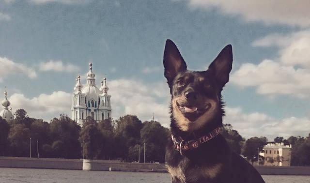 http://images.vfl.ru/ii/1504616420/b1588994/18489717_m.jpg