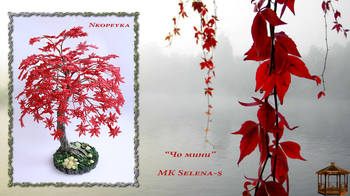 http://images.vfl.ru/ii/1504783273/4210ce0f/18512913_m.jpg