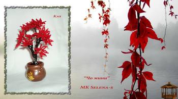 http://images.vfl.ru/ii/1504783273/4576cb3c/18512912_m.jpg