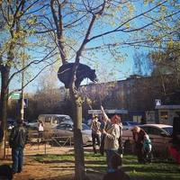 http://images.vfl.ru/ii/1504976137/3b4f3d76/18540775_s.jpg