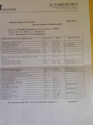 Катенька - Катюша 18562540_m