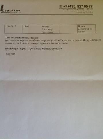 Катенька - Катюша 18562581_m