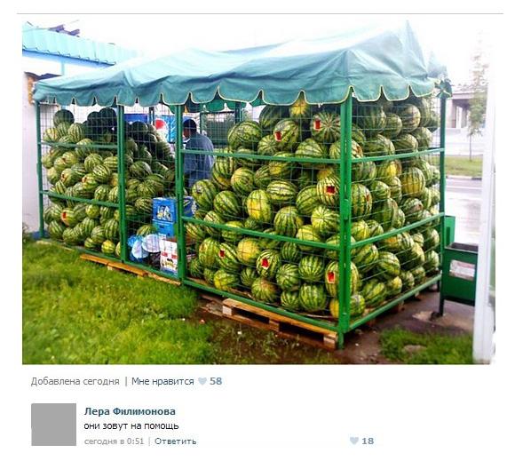 http://images.vfl.ru/ii/1505242040/2d5b89d0/18581217.jpg