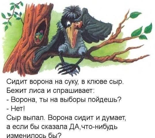 http://images.vfl.ru/ii/1505408479/9ff446c6/18603133_m.jpg