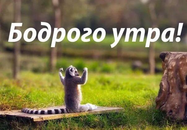 http://images.vfl.ru/ii/1505452026/5e0cdc83/18606836.jpg