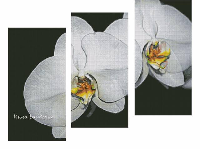 http://images.vfl.ru/ii/1505500469/d2b86fae/18617015_m.jpg