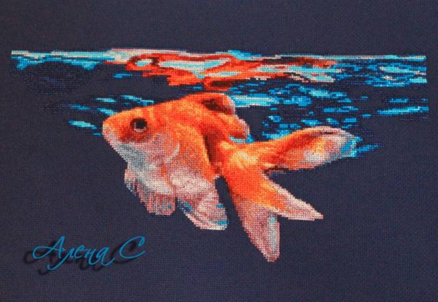 http://images.vfl.ru/ii/1505501037/b8cfc80f/18617118_m.jpg