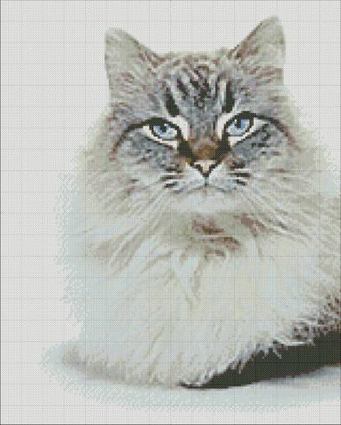 http://images.vfl.ru/ii/1505553774/ee3767d2/18622373_m.jpg