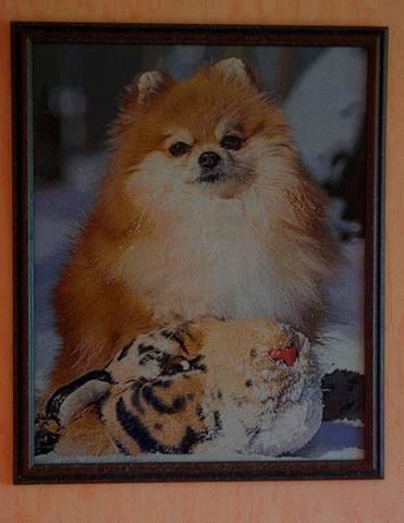 http://images.vfl.ru/ii/1505557126/dc611467/18622927_m.jpg