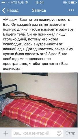 http://images.vfl.ru/ii/1505683769/0da2796e/18640023_m.jpg