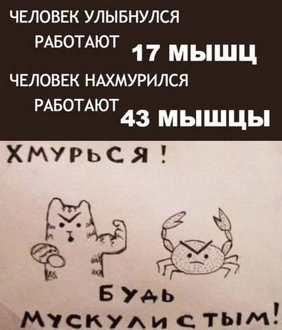 http://images.vfl.ru/ii/1505684223/ce15af00/18640059_m.jpg