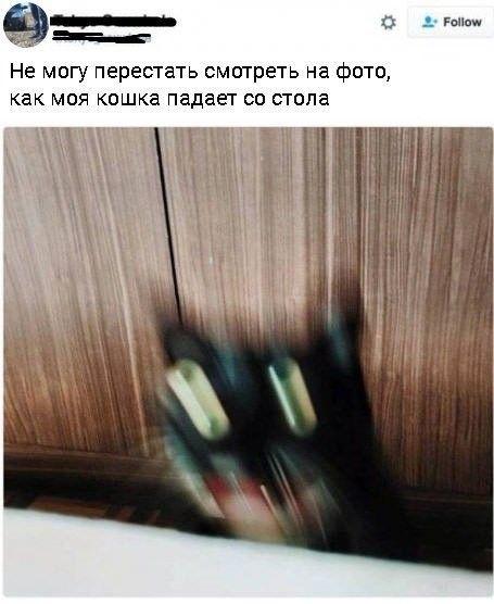 http://images.vfl.ru/ii/1505727055/25fbcbfe/18644992.jpg