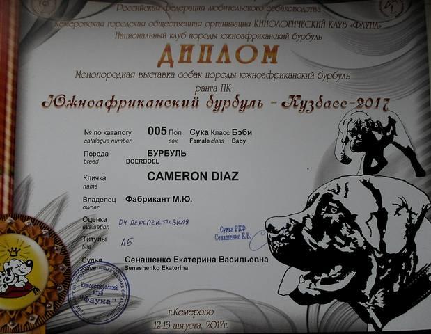 http://images.vfl.ru/ii/1505807307/fc2d2ba7/18656233_m.jpg