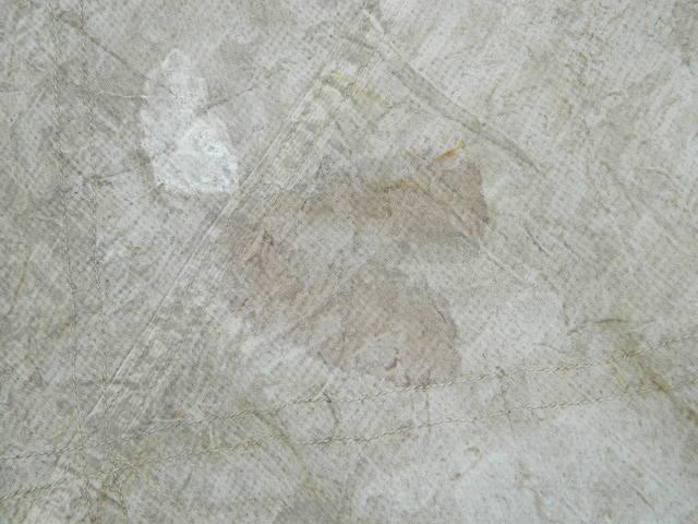 18683001_m.jpg