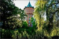 http://images.vfl.ru/ii/1506068780/c77da3cc/18691973_s.jpg