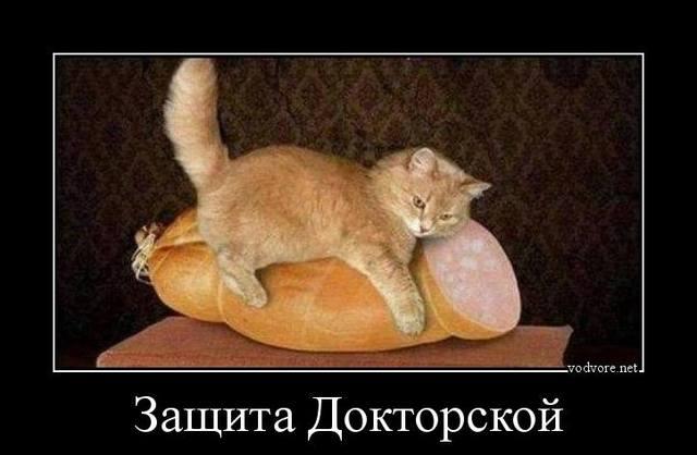 http://images.vfl.ru/ii/1506426595/84ecd81a/18749834_m.jpg