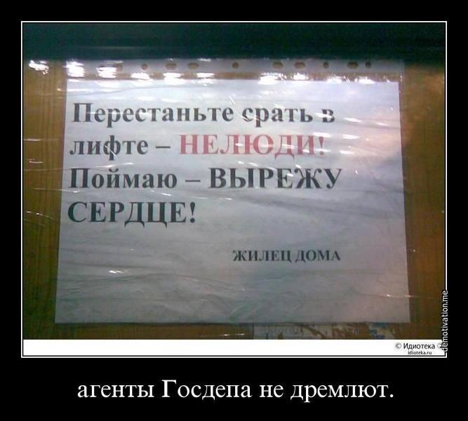 http://images.vfl.ru/ii/1506488357/57a8cc9e/18760095.jpg