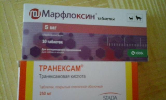 Катенька - Катюша 18819862_m
