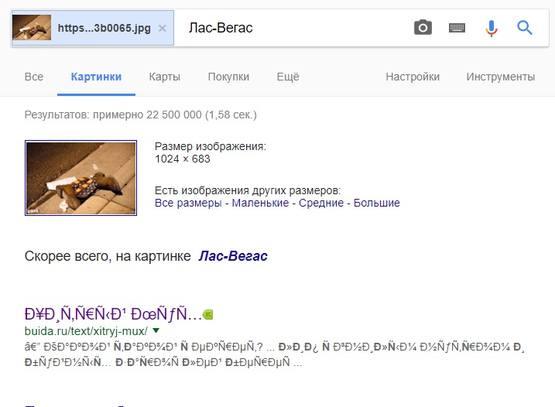 http://images.vfl.ru/ii/1507054372/f396ad0c/18845999_m.jpg