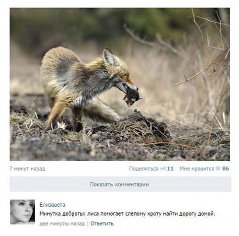 http://images.vfl.ru/ii/1507195159/31997c54/18866892.jpg