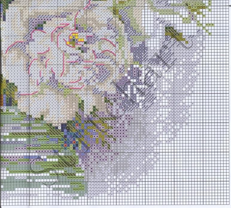 Схема вышивки калифорнийские пионы