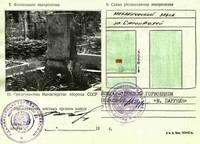http://images.vfl.ru/ii/1507273930/440131a2/18880988_s.jpg