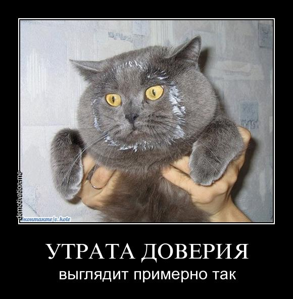 http://images.vfl.ru/ii/1507308914/09a245bc/18888828.jpg