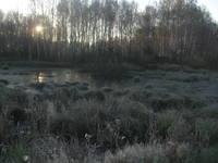 http://images.vfl.ru/ii/1507464224/e347f485/18912480_s.jpg