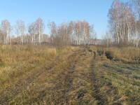 http://images.vfl.ru/ii/1507464570/245741b3/18912588_s.jpg