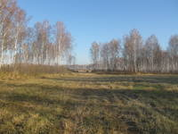 http://images.vfl.ru/ii/1507464699/dd1b2c6d/18912633_s.jpg