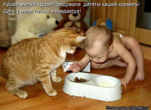 http://images.vfl.ru/ii/1507466617/00e7fd3a/18913044_m.jpg