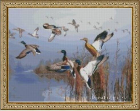 http://images.vfl.ru/ii/1507623894/5c8b2447/18935343_m.jpg