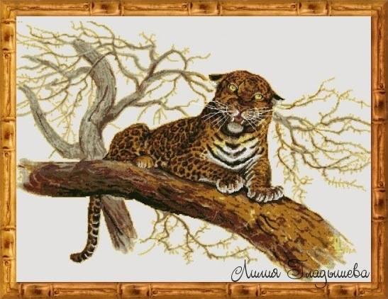 http://images.vfl.ru/ii/1507624017/6964793d/18935371_m.jpg