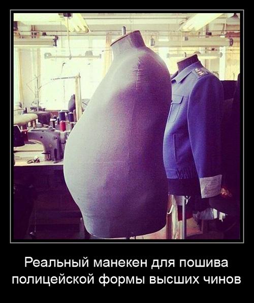 http://images.vfl.ru/ii/1507719466/a2349546/18950276.jpg