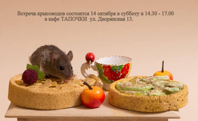 http://images.vfl.ru/ii/1507869973/81a1e38c/18979173_m.jpg