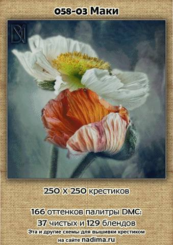 http://images.vfl.ru/ii/1507887707/c80a80f9/18982769_m.jpg