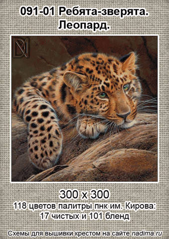 http://images.vfl.ru/ii/1507890951/bbd026e3/18983742_m.jpg