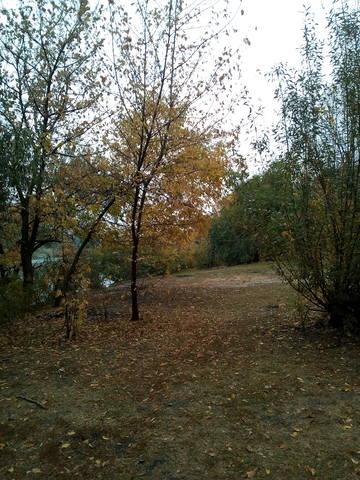 http://images.vfl.ru/ii/1507901337/7c6d9832/18986091_m.jpg