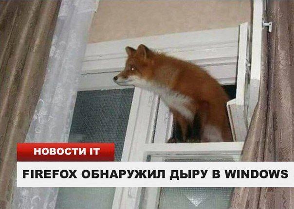 http://images.vfl.ru/ii/1507911892/fbb3a036/18988112_m.jpg