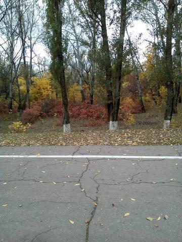 http://images.vfl.ru/ii/1508075718/f42b359f/19010835_m.jpg