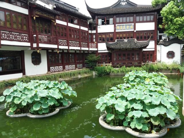 Грандиозный Шанхай моими глазами - Страница 6 19020477_m